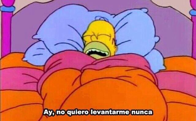 Cuando te despiertas en la mañana - meme
