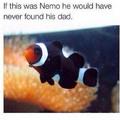 Nemo ehh