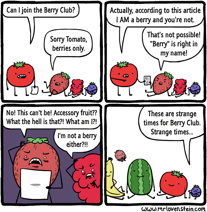 Poor berries....I mean accessory fruits - meme
