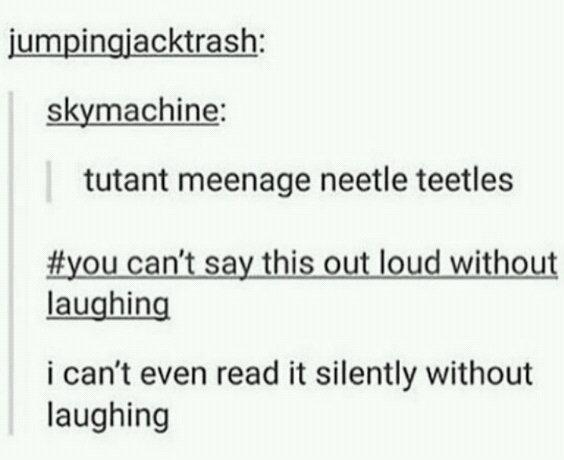 Teenage ninja Turtles - meme