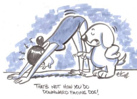 Yoga - meme