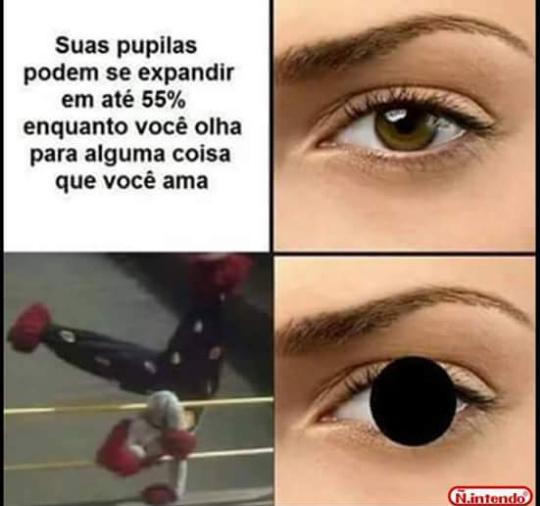 Fofaum - meme