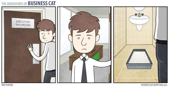 The adventures of business cat - meme