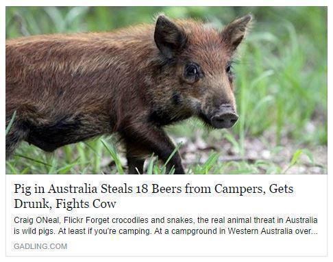 Best headline ever. - meme