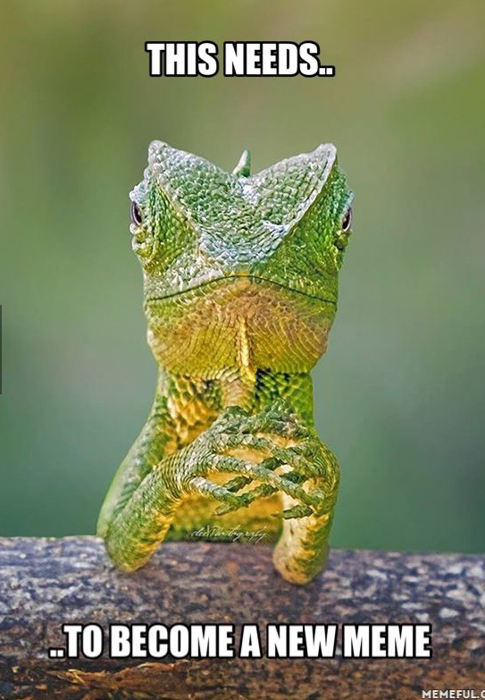 Conversation lizard... - meme