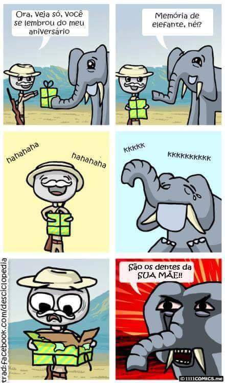 Memória de elefante - meme
