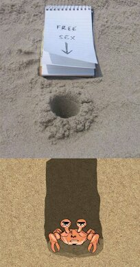 Crabby Hole - meme