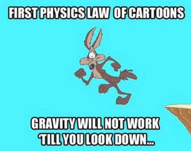 physics of Cartoons - meme
