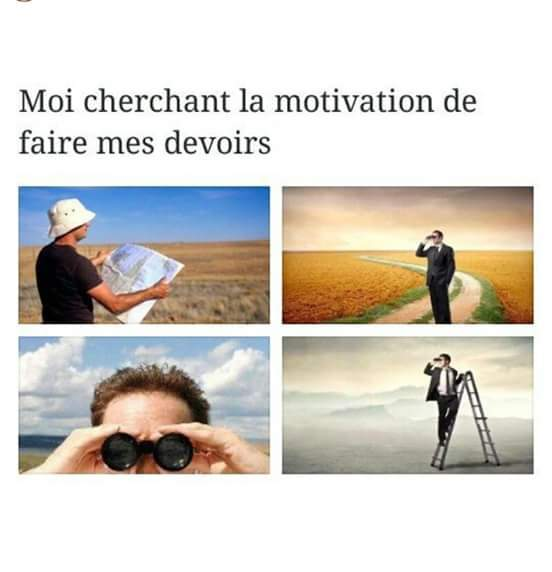 La motivation - meme