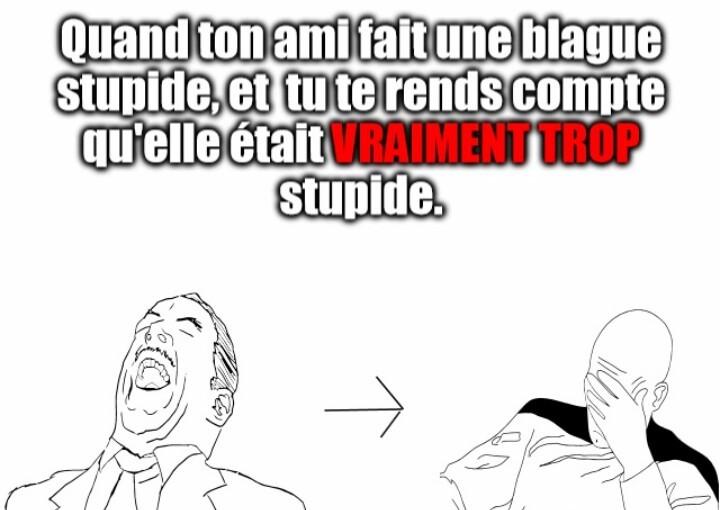 ''Stupidide'' pour ne pas dire con - meme