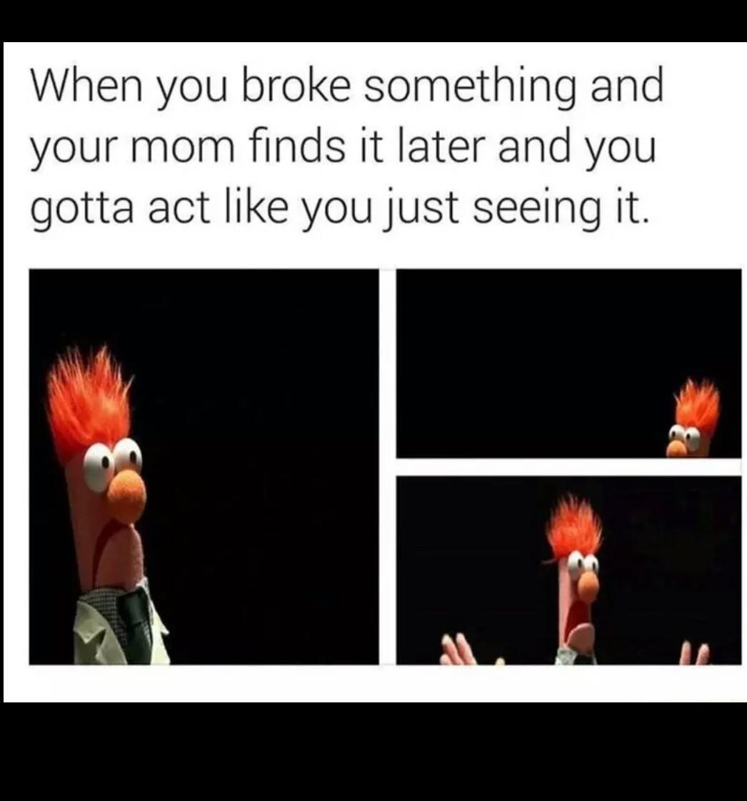 It wasnt me. - meme