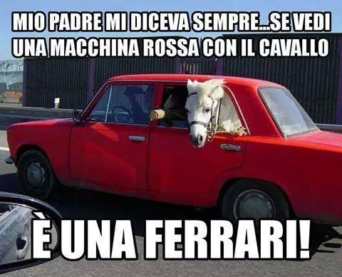 Ferrarista forever ... - meme