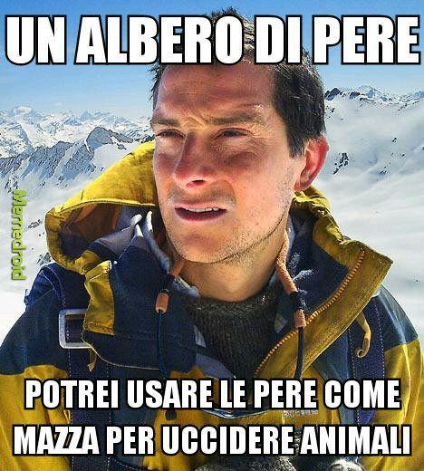 Pere - meme