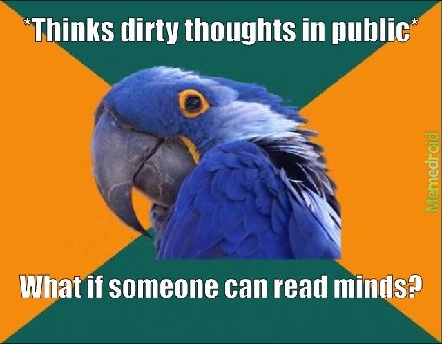 Paranoid Parrot - meme