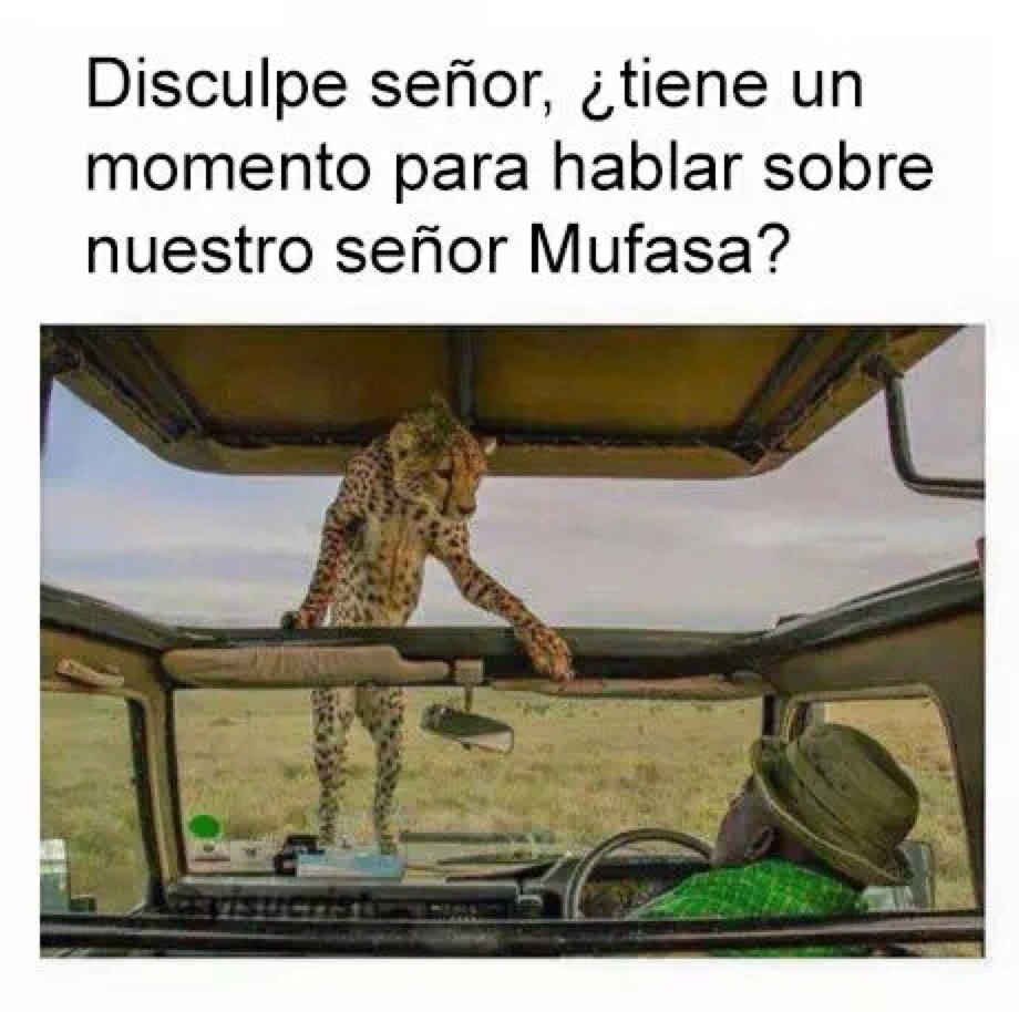 Mufasa :,( - meme