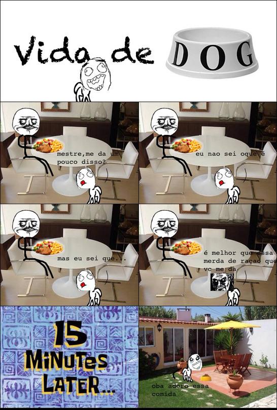 Coloquem coisas que seus cachorros fazem nos comentarios - meme