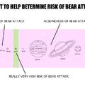 1 in 2 people get attacked by bears every day