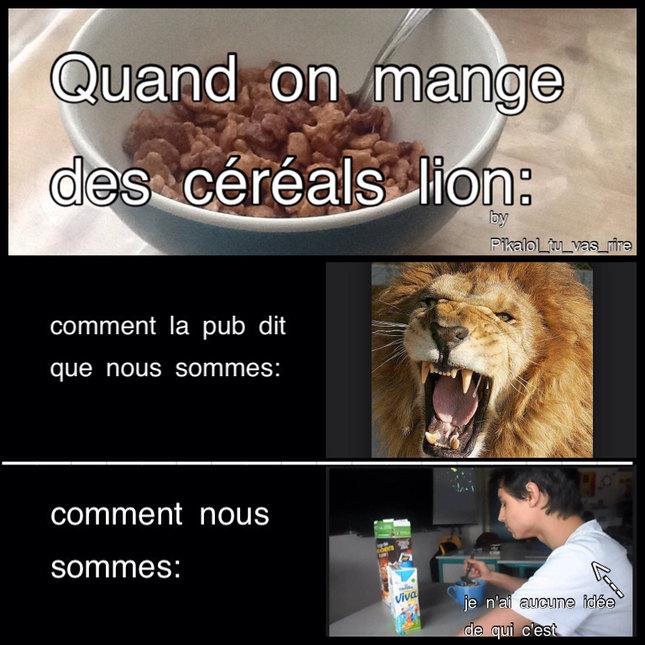 Cereal lion rrrrrr !! - meme