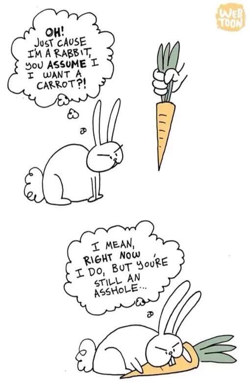 robbit - meme