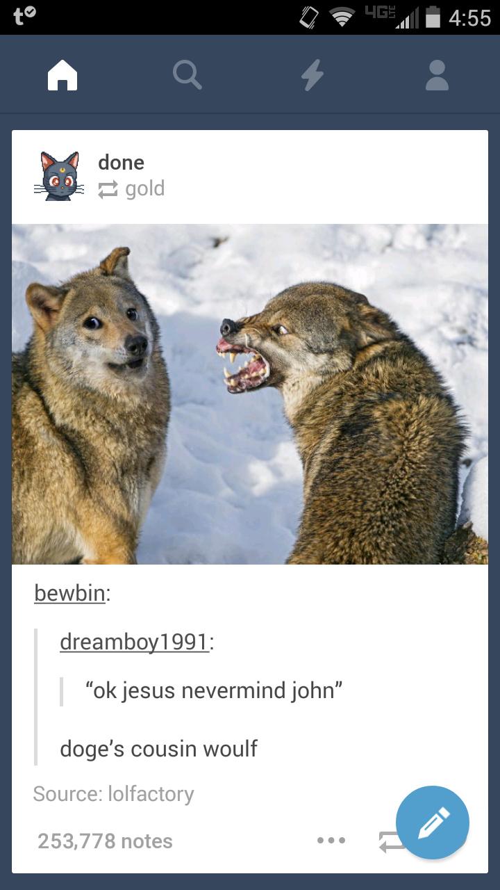 Such ferocity much danger - meme