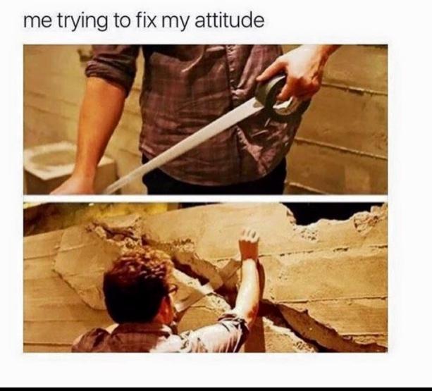 ATTITUDE - meme