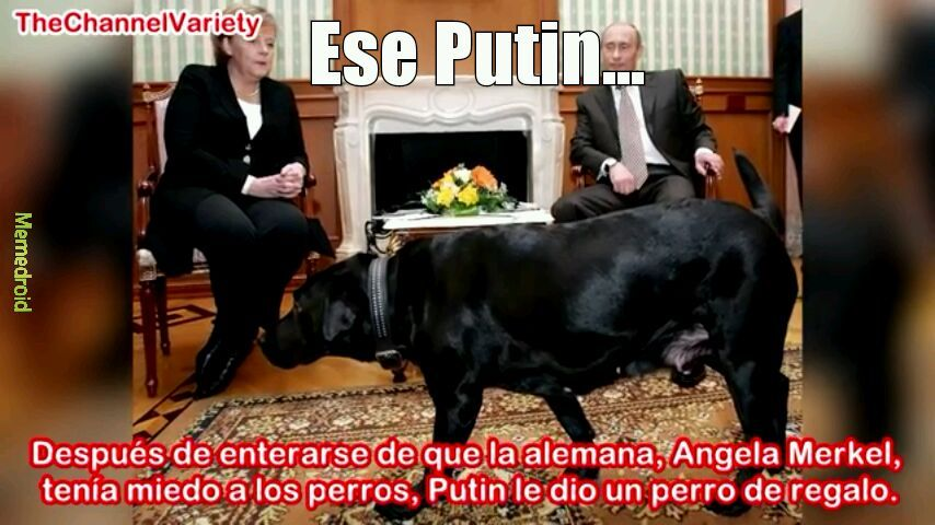 Putin - meme