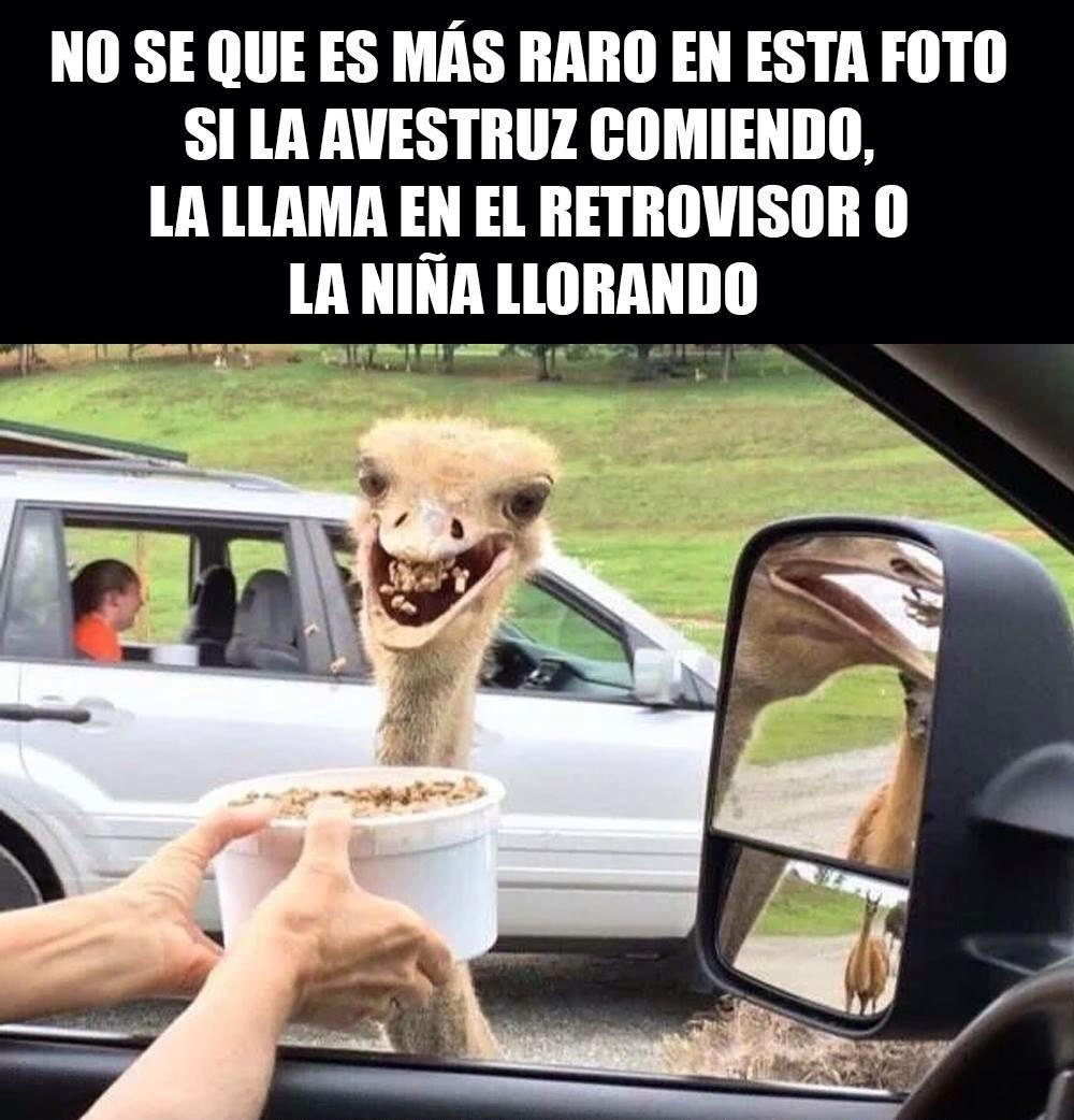 rareza - meme