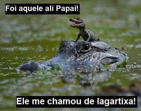 lagartixa;) - meme