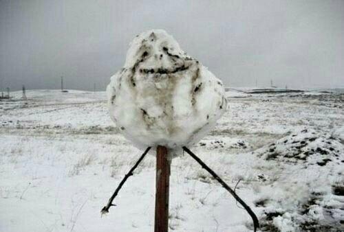 Se eu fosse no alasca.......... - meme