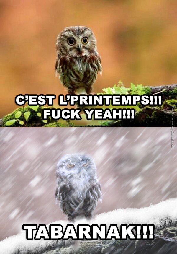 Le Québec... - meme