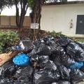 Não jogue lixo