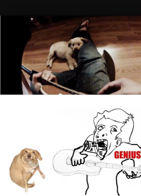 Gênios só que não parte 21 - meme