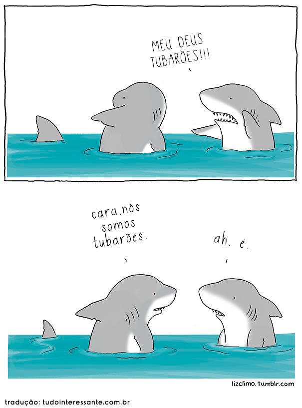 Tubarões - meme