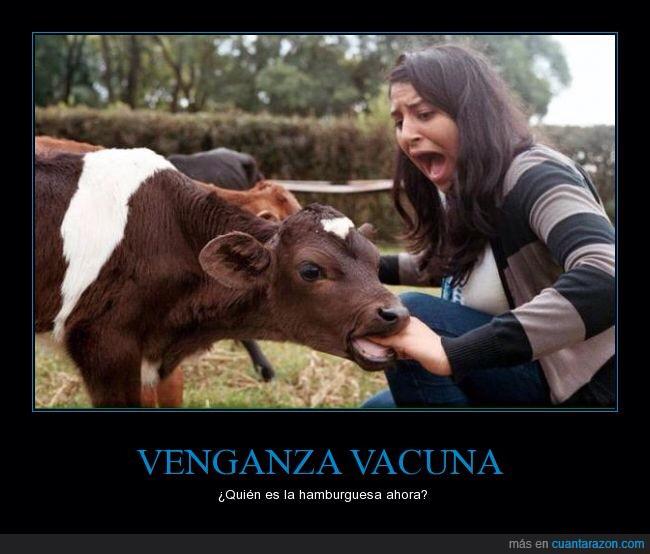 Venganza! - meme