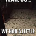 All hail the damage