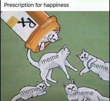 Happiness in one cat - meme