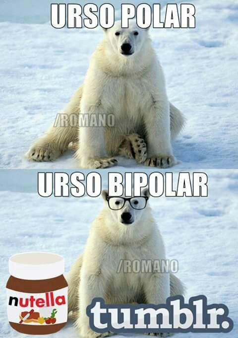 Bipolar Polar Bear Meme The Best Bear Of 2018