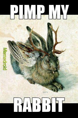 Pimp my rabbit - meme