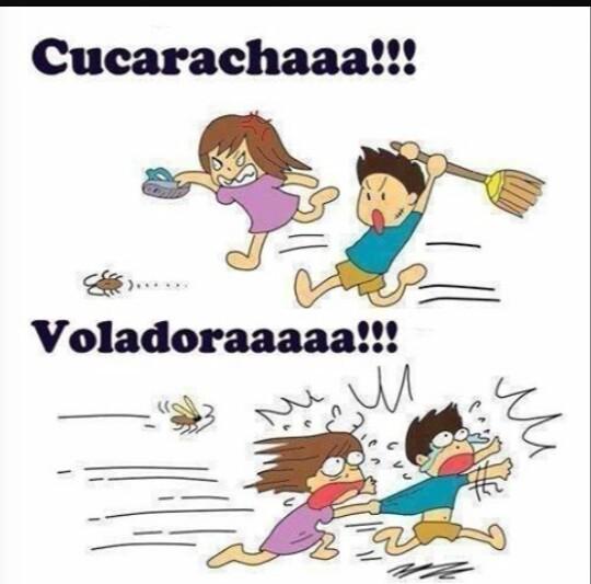 Cucaracha! - meme