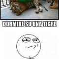 Adoro dormire sulle tigri