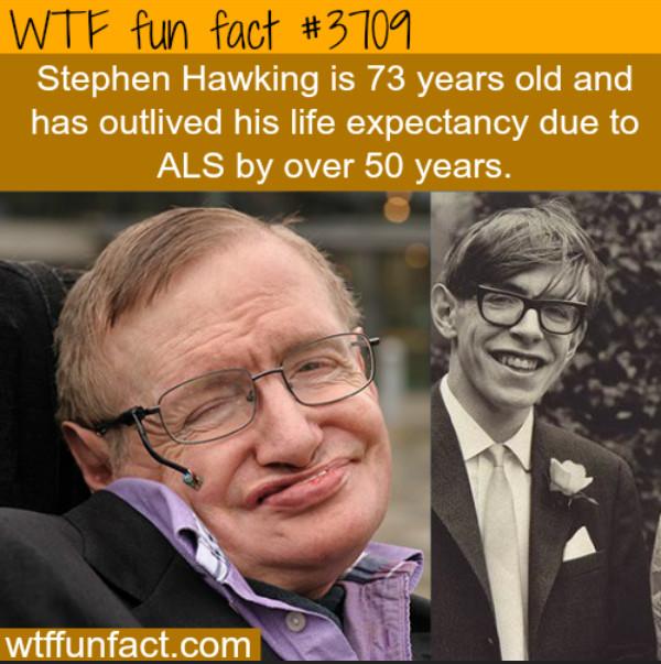 Stephen Hawking - meme