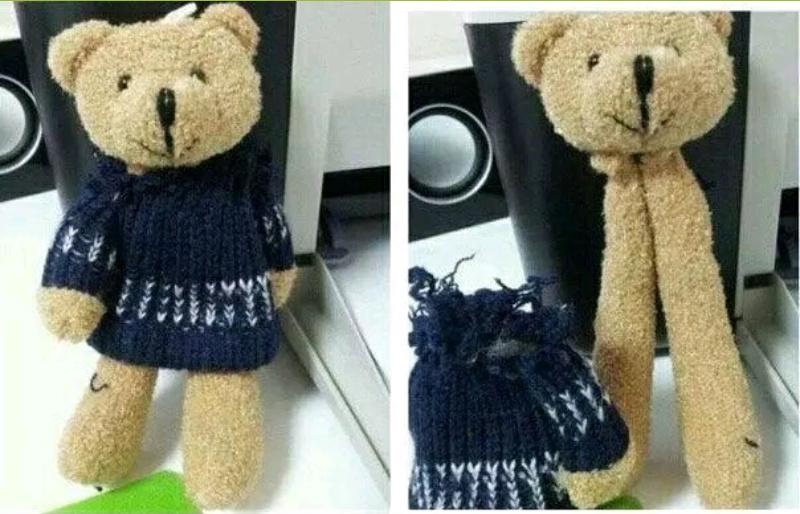 Cet ourson est passé par Tchernobyl. - meme