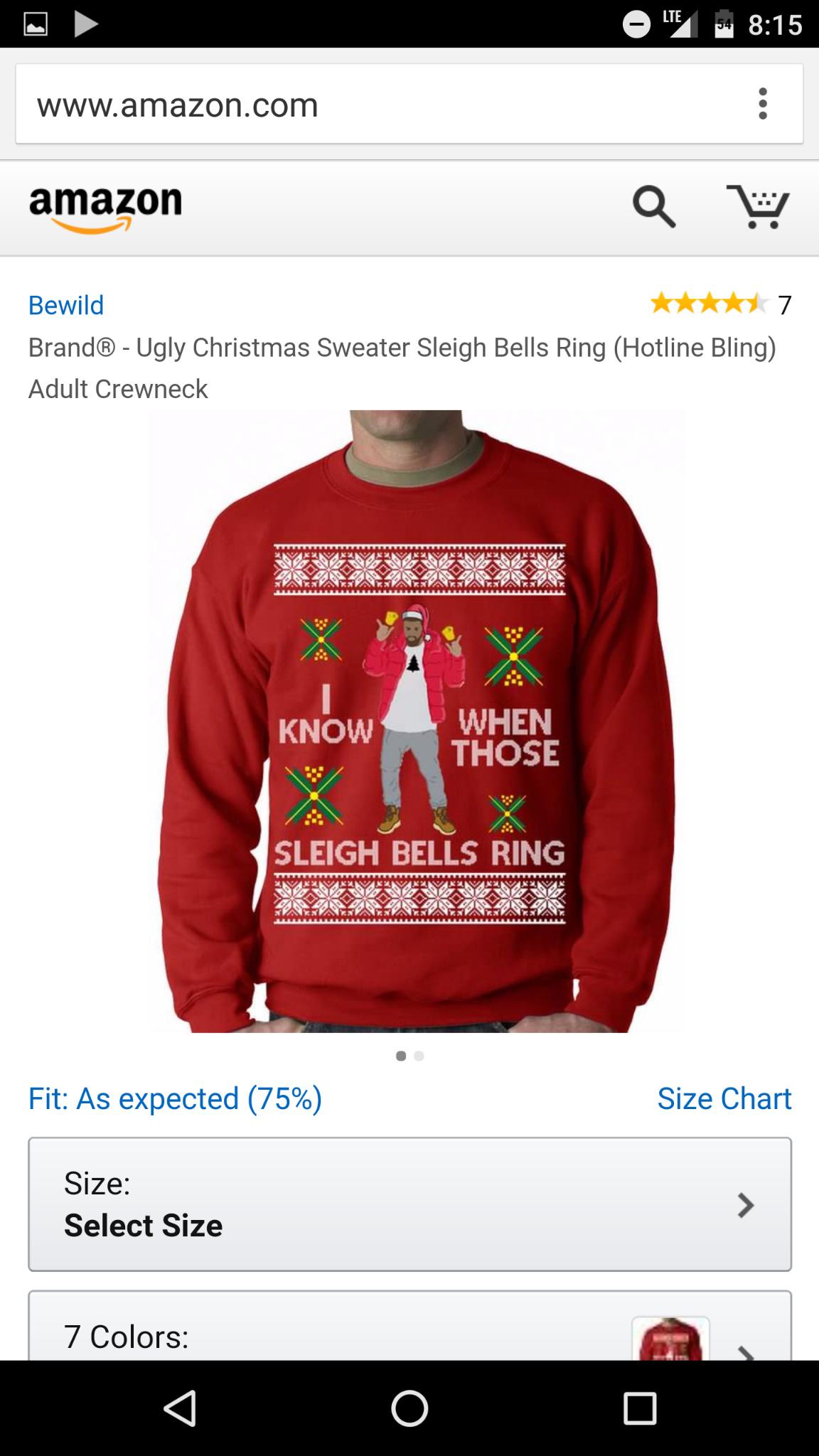 Sleigh bells ring - meme