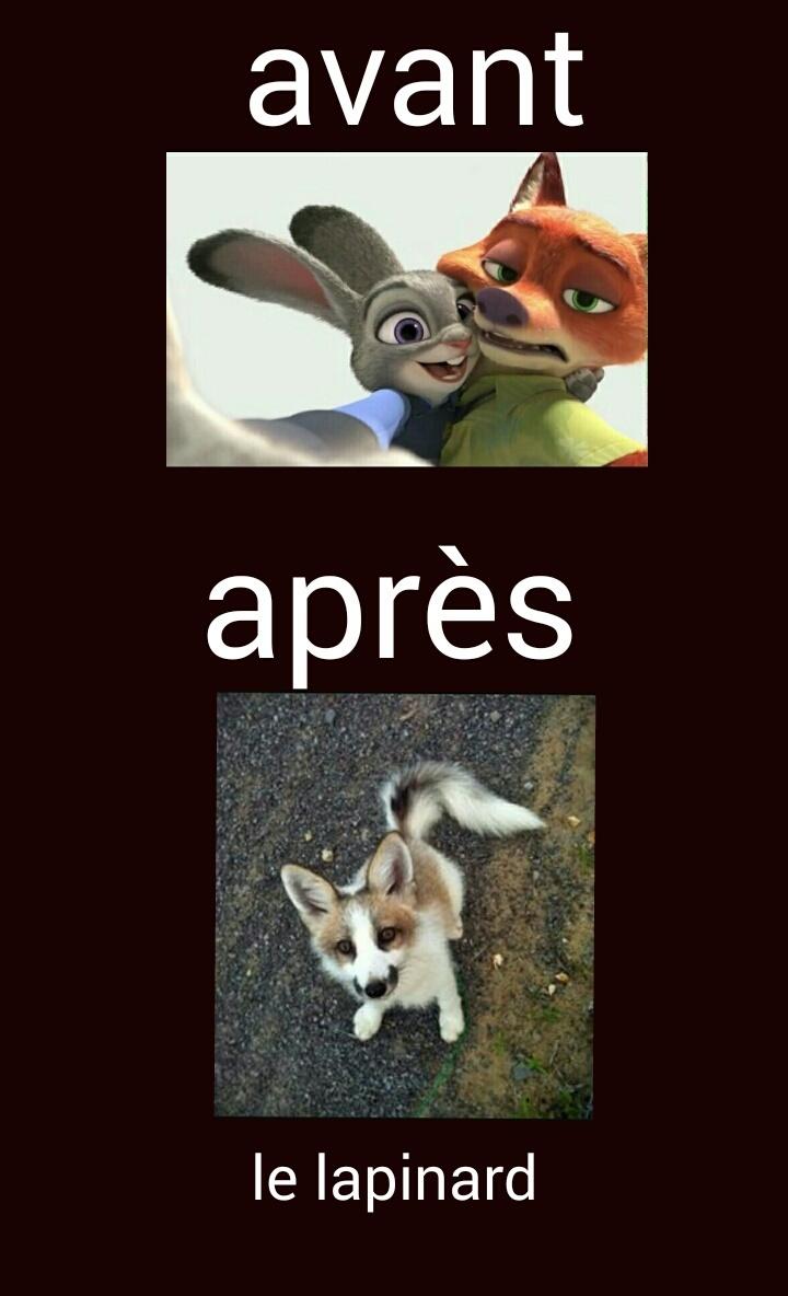 Zootopie - meme