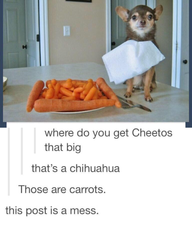 Those are some adorable cheetos - meme