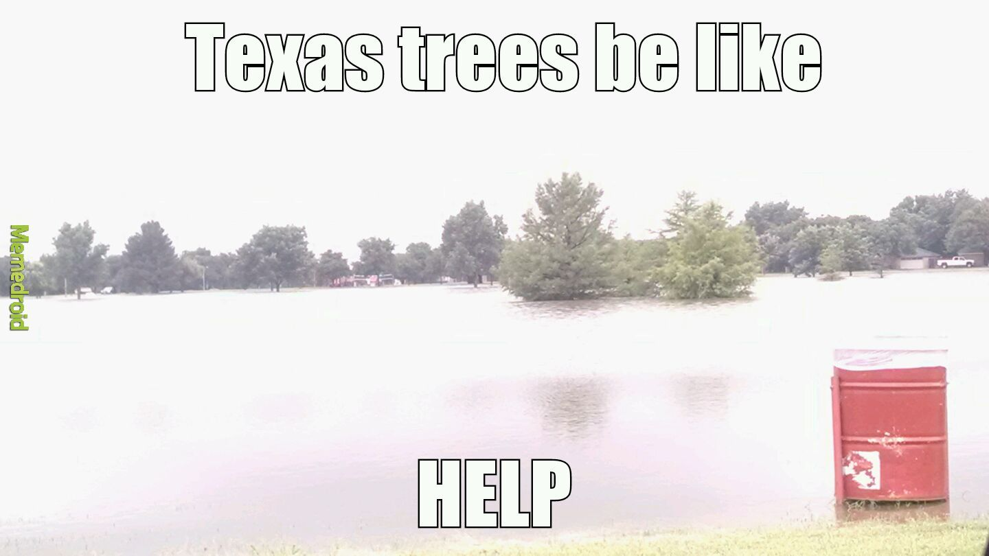 West texas weather - meme