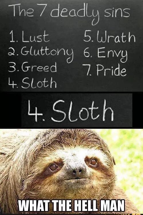 sloths be like - meme