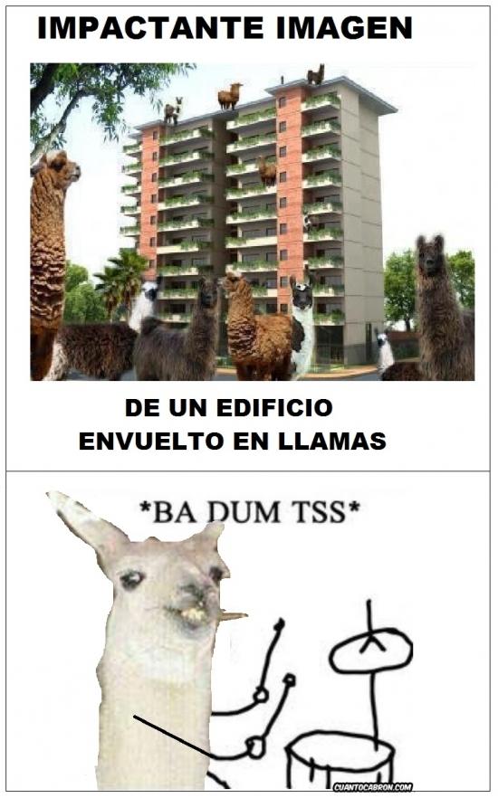 *BA DUM TSS* - meme