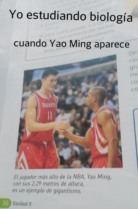 Ese Yao es todo un loquillo - meme