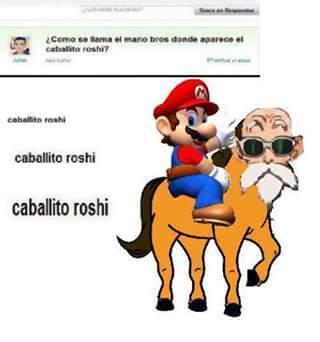 Caballo roshi - meme